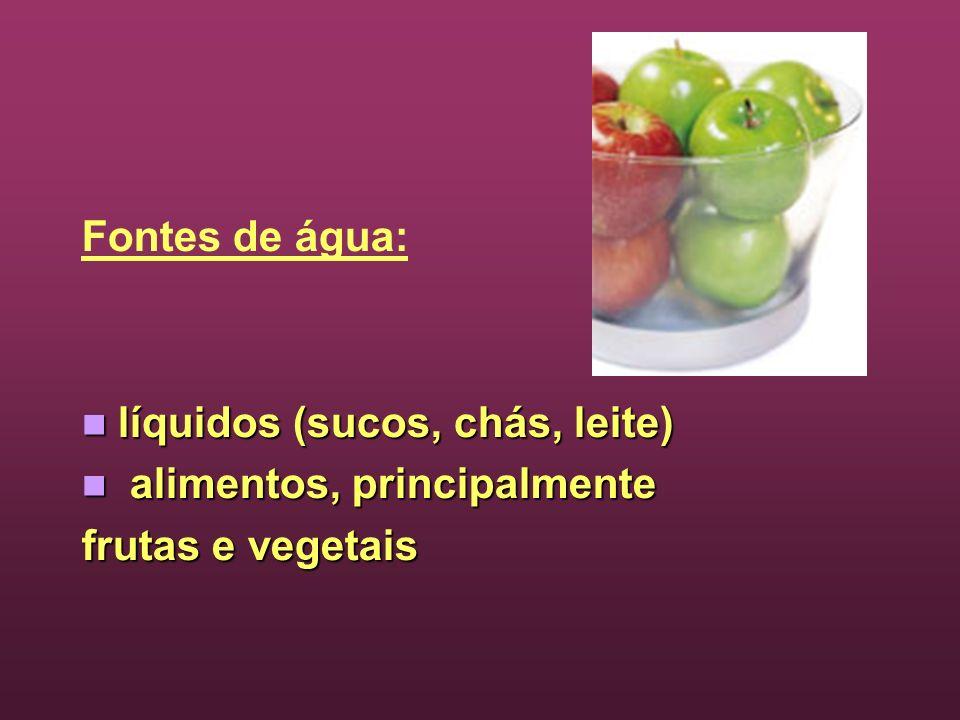 Fontes de água: líquidos (sucos, chás, leite) alimentos, principalmente frutas e vegetais