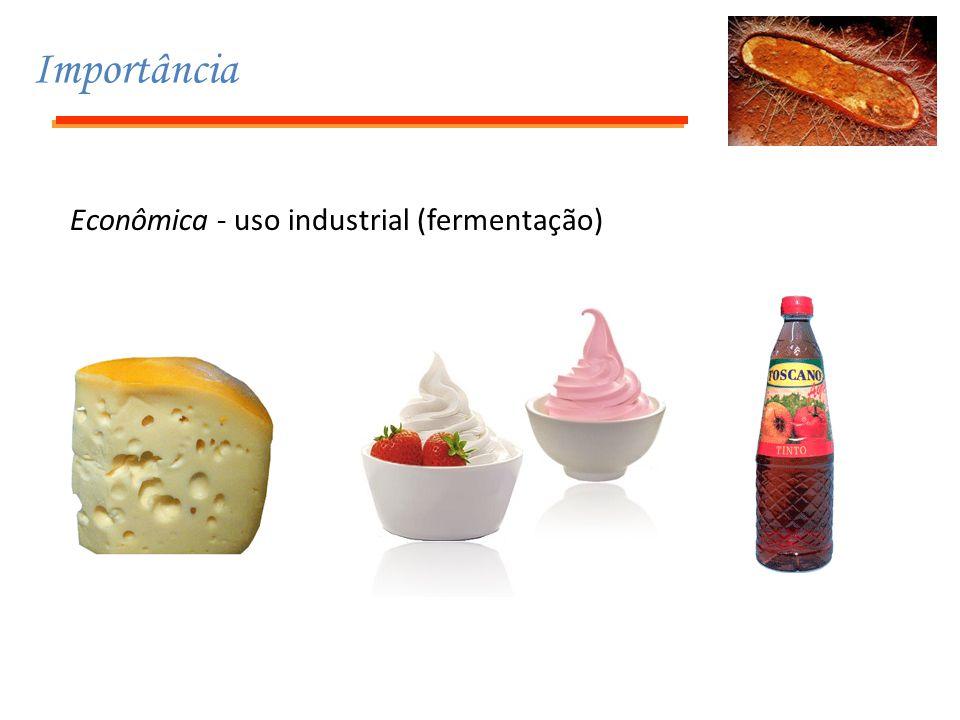 Importância Econômica - uso industrial (fermentação)