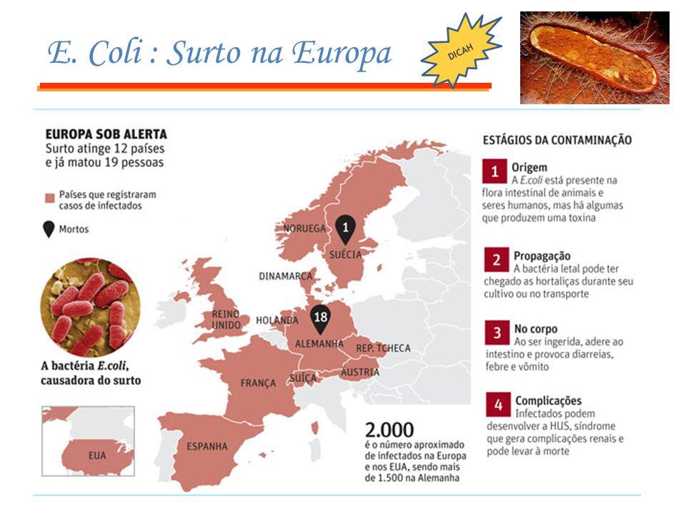 DICAH E. Coli : Surto na Europa