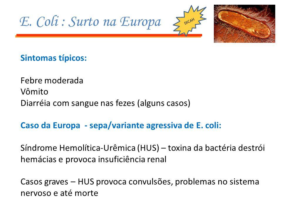 E. Coli : Surto na Europa Sintomas típicos: Febre moderada Vômito