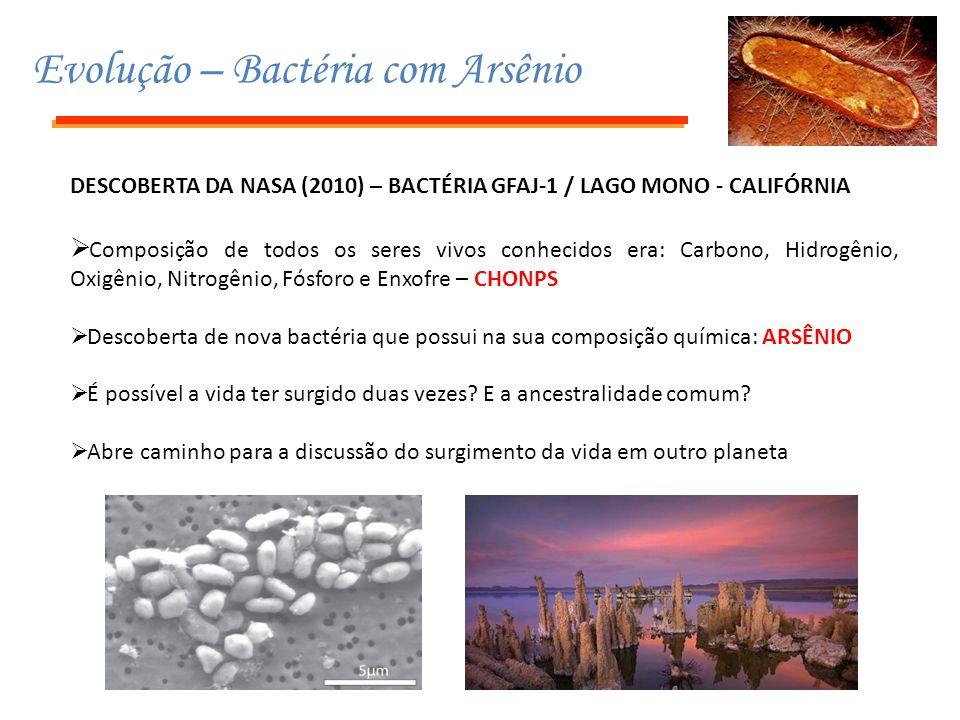 Evolução – Bactéria com Arsênio