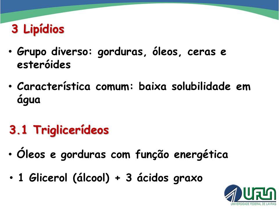 3 Lipídios 3.1 Triglicerídeos
