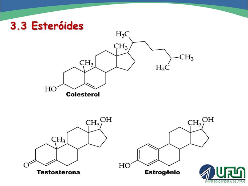 3.3 Esteróides
