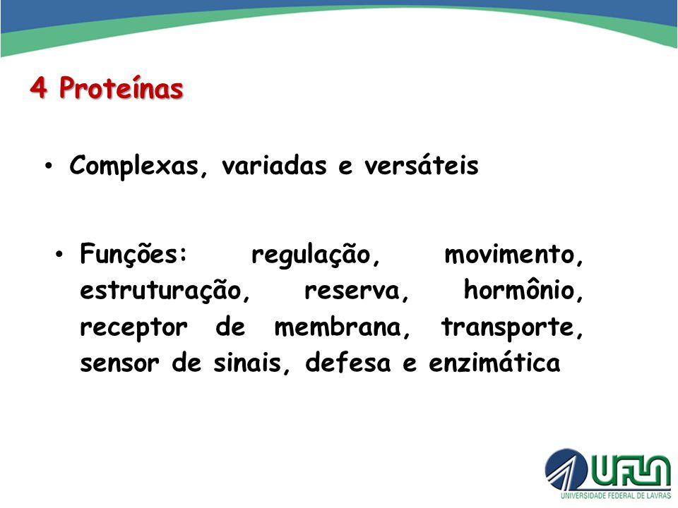 4 Proteínas Complexas, variadas e versáteis