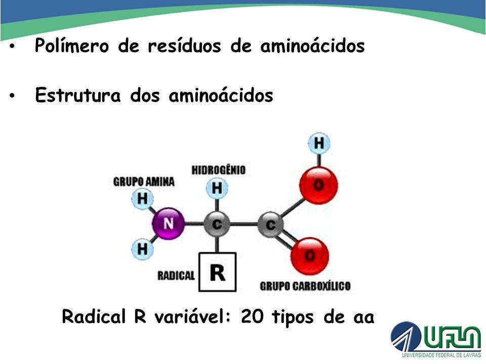 Polímero de resíduos de aminoácidos