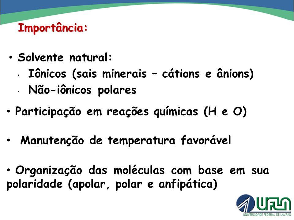 Importância: Solvente natural: Iônicos (sais minerais – cátions e ânions) Não-iônicos polares. Participação em reações químicas (H e O)