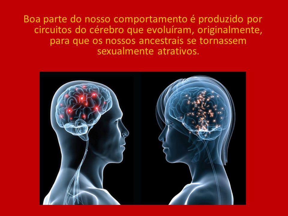 Boa parte do nosso comportamento é produzido por circuitos do cérebro que evoluíram, originalmente, para que os nossos ancestrais se tornassem sexualmente atrativos.