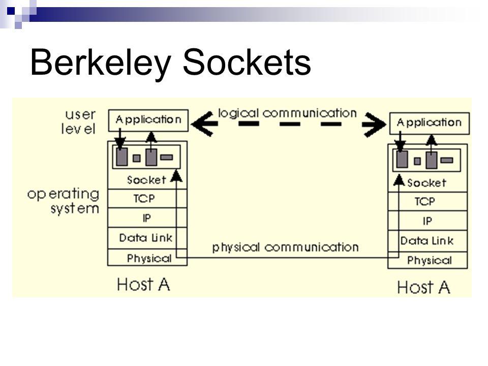 Berkeley Sockets