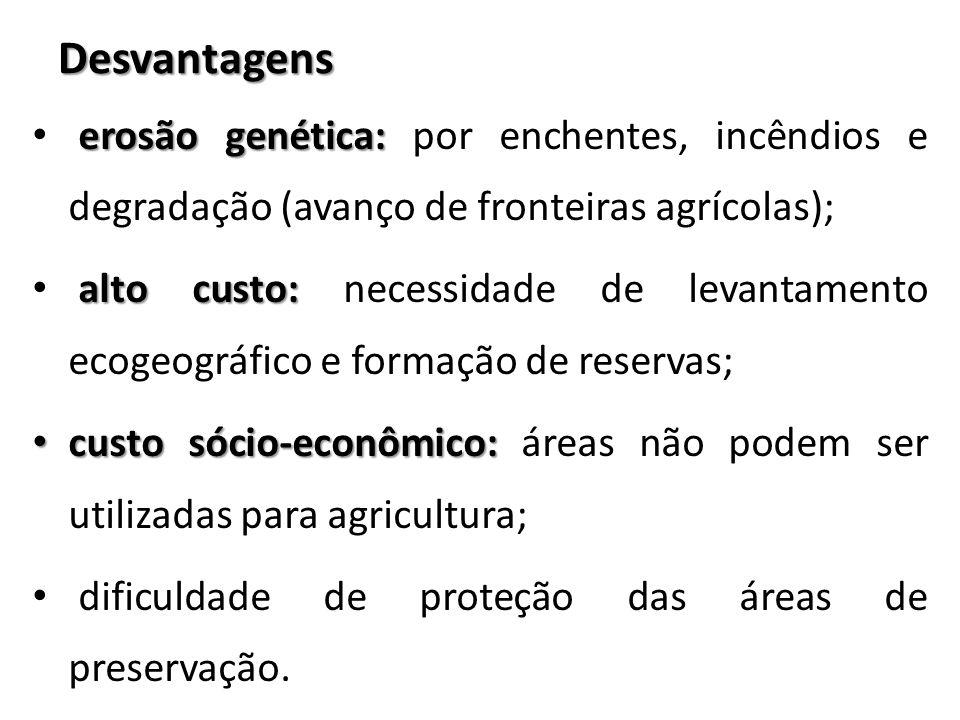 Desvantagens erosão genética: por enchentes, incêndios e degradação (avanço de fronteiras agrícolas);