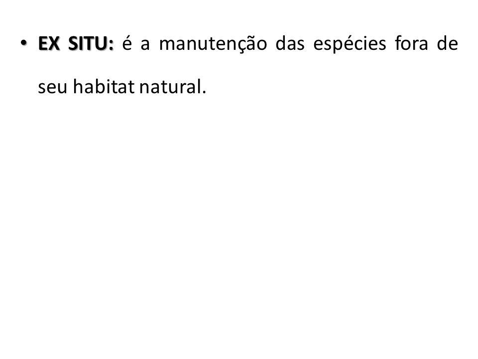 EX SITU: é a manutenção das espécies fora de seu habitat natural.