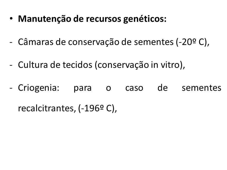 Manutenção de recursos genéticos: