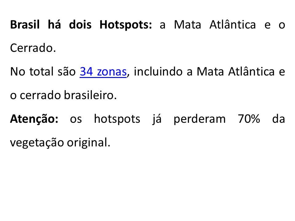 Brasil há dois Hotspots: a Mata Atlântica e o Cerrado.