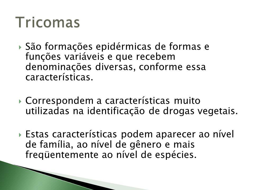 Tricomas São formações epidérmicas de formas e funções variáveis e que recebem denominações diversas, conforme essa características.