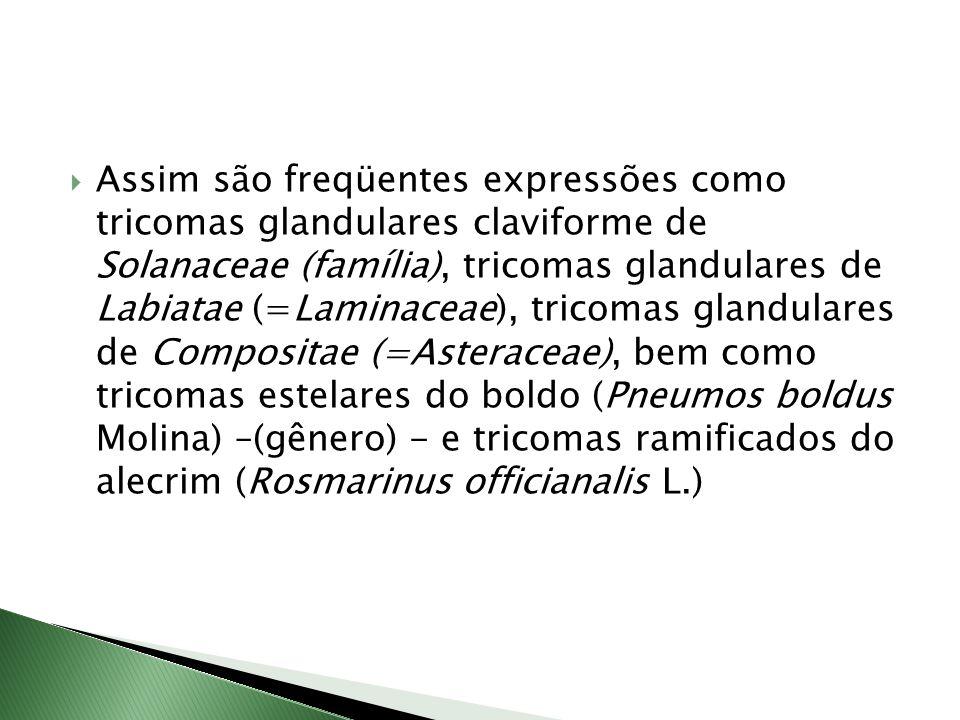 Assim são freqüentes expressões como tricomas glandulares claviforme de Solanaceae (família), tricomas glandulares de Labiatae (=Laminaceae), tricomas glandulares de Compositae (=Asteraceae), bem como tricomas estelares do boldo (Pneumos boldus Molina) –(gênero) - e tricomas ramificados do alecrim (Rosmarinus officianalis L.)
