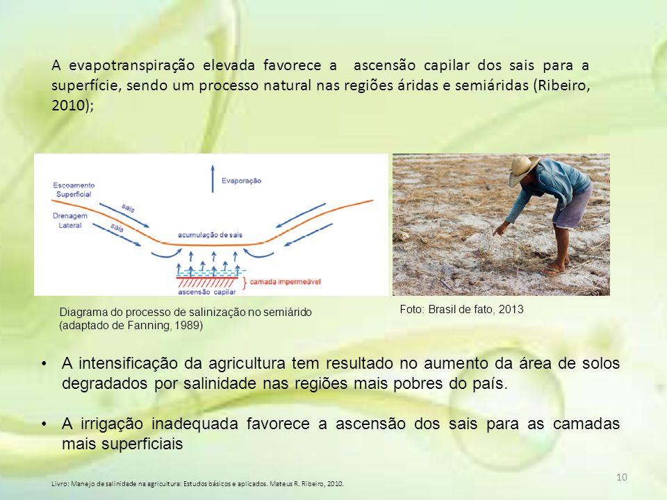 A evapotranspiração elevada favorece a ascensão capilar dos sais para a superfície, sendo um processo natural nas regiões áridas e semiáridas (Ribeiro, 2010);