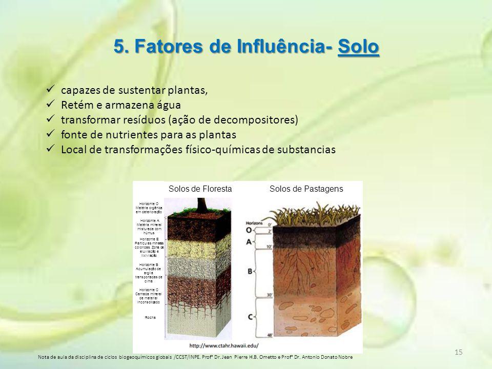 5. Fatores de Influência- Solo