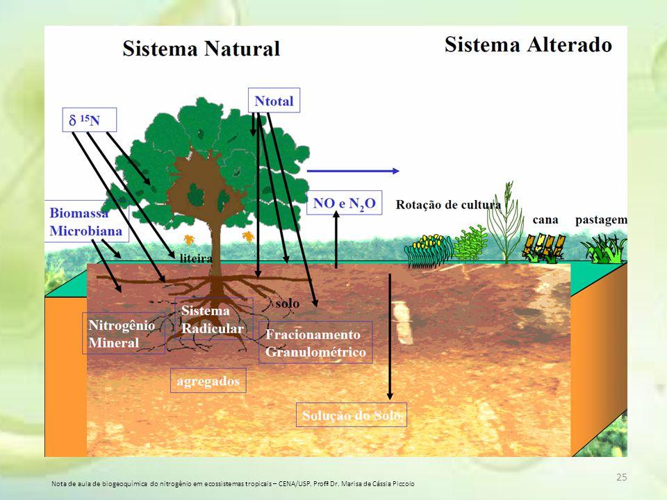 Nota de aula de biogeoquímica do nitrogênio em ecossistemas tropicais – CENA/USP.