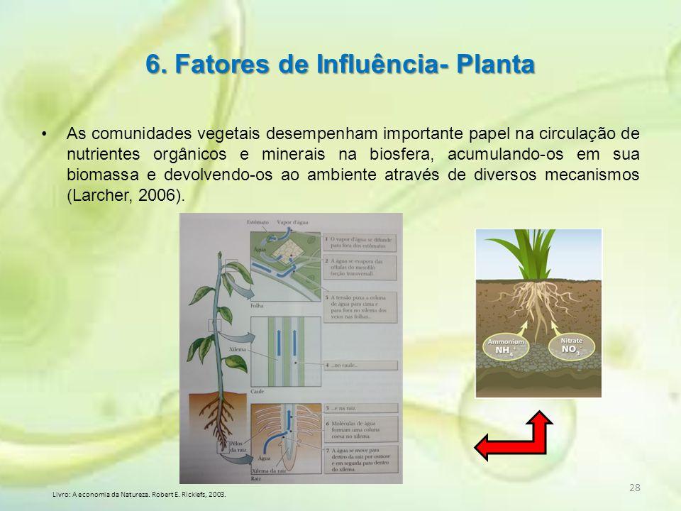 6. Fatores de Influência- Planta