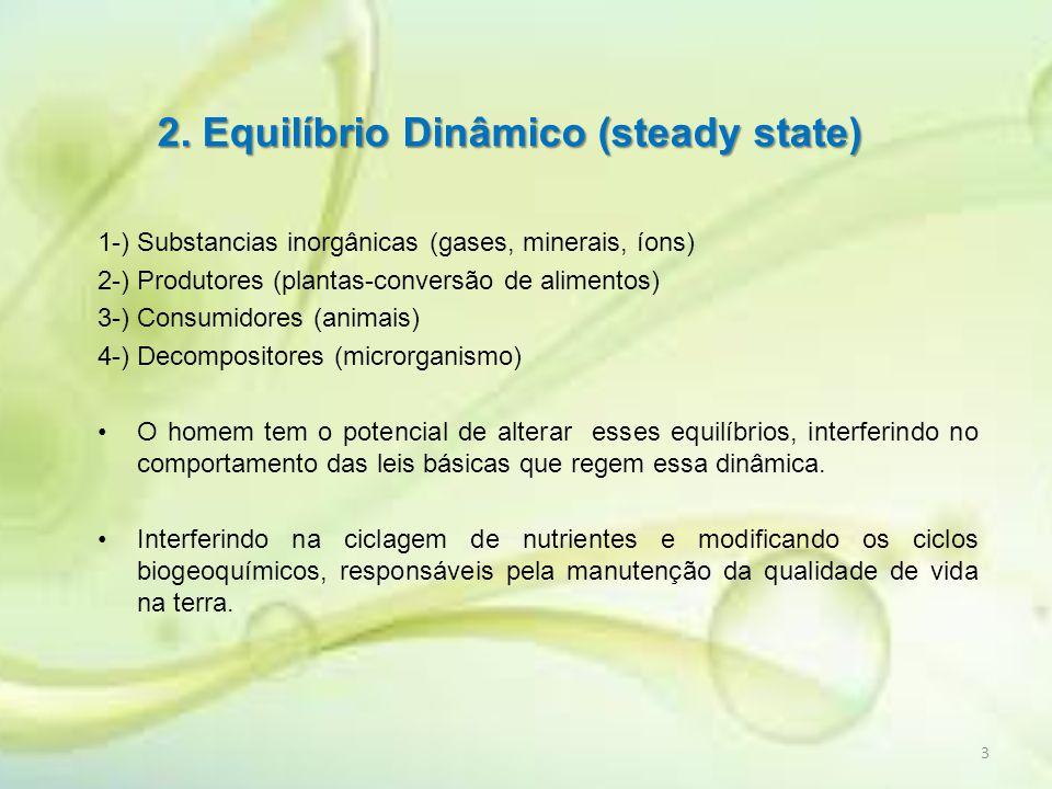 2. Equilíbrio Dinâmico (steady state)