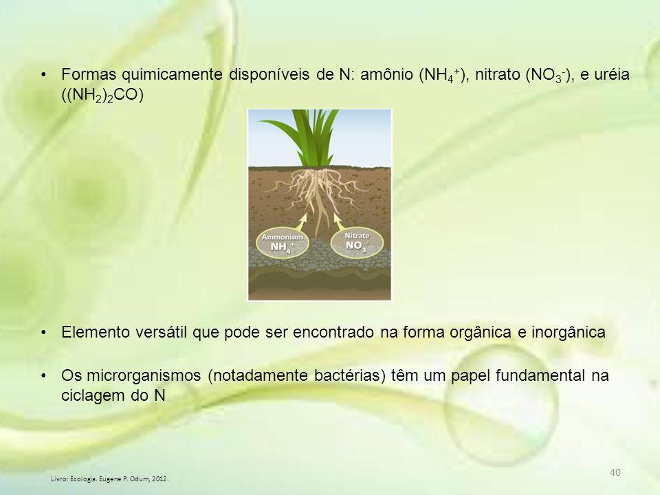 Formas quimicamente disponíveis de N: amônio (NH4+), nitrato (NO3-), e uréia ((NH2)2CO)