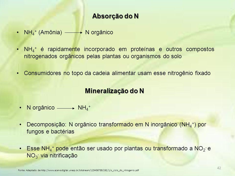 Absorção do N Mineralização do N