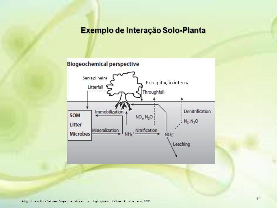 Exemplo de Interação Solo-Planta