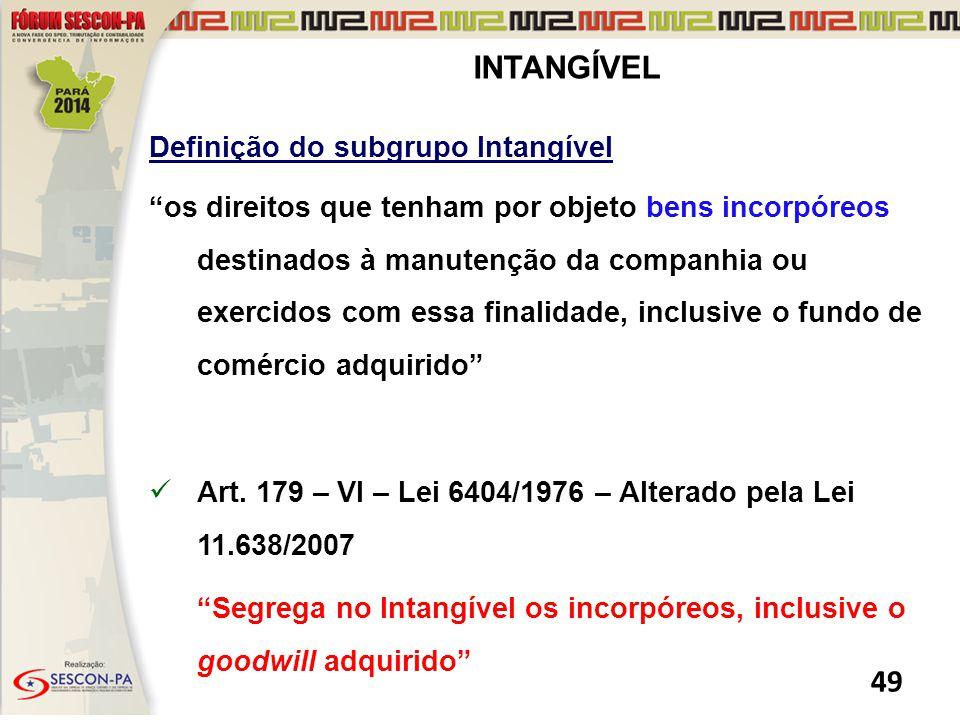 INTANGÍVEL Definição do subgrupo Intangível