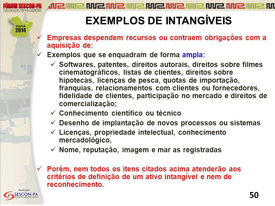 EXEMPLOS DE INTANGÍVEIS