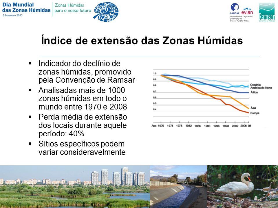 Índice de extensão das Zonas Húmidas