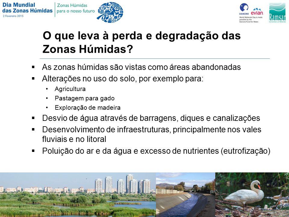 O que leva à perda e degradação das Zonas Húmidas