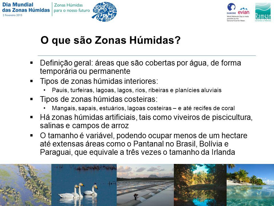 O que são Zonas Húmidas Definição geral: áreas que são cobertas por água, de forma temporária ou permanente.