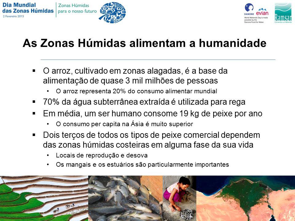 As Zonas Húmidas alimentam a humanidade