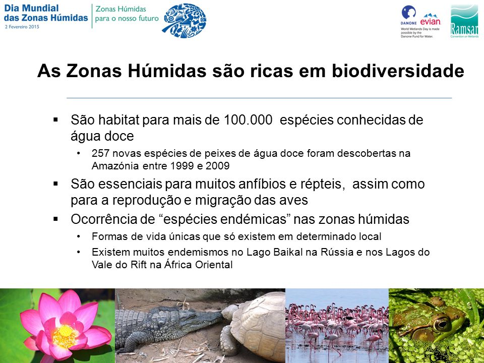 As Zonas Húmidas são ricas em biodiversidade
