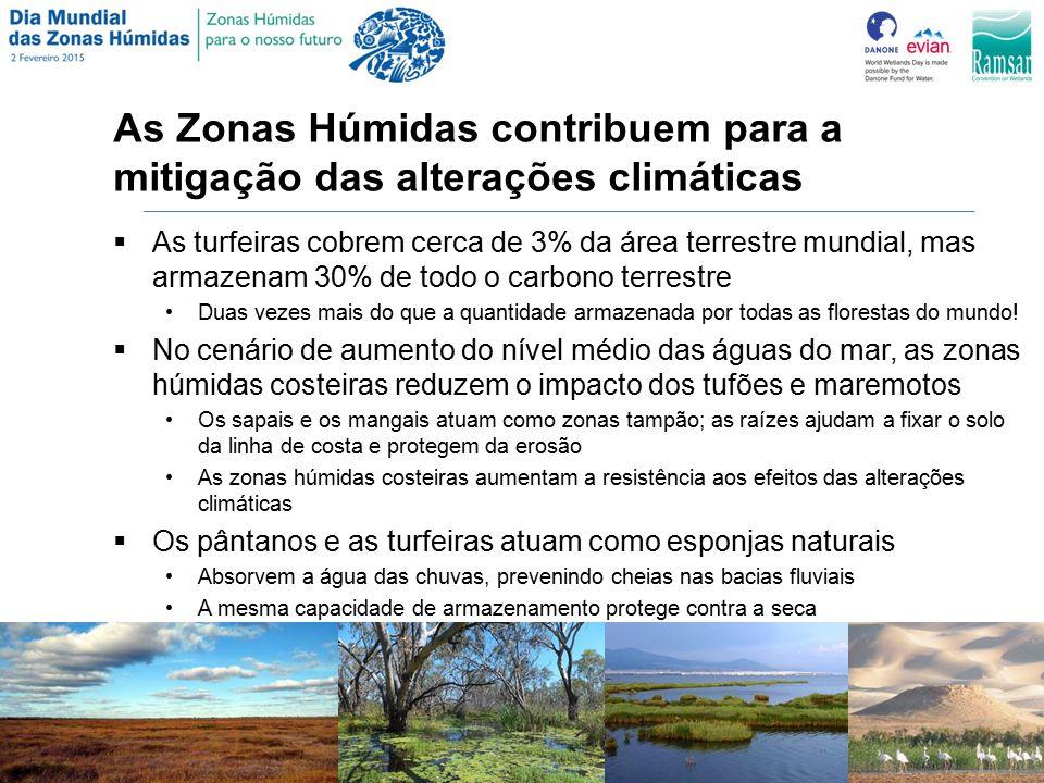 As Zonas Húmidas contribuem para a mitigação das alterações climáticas