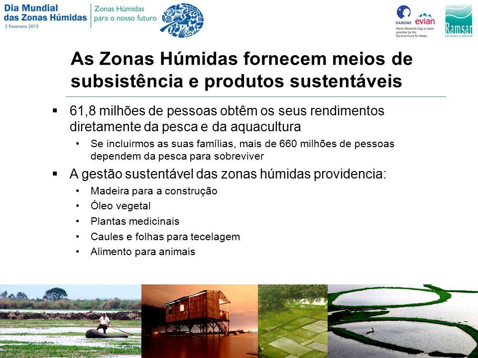 As Zonas Húmidas fornecem meios de subsistência e produtos sustentáveis