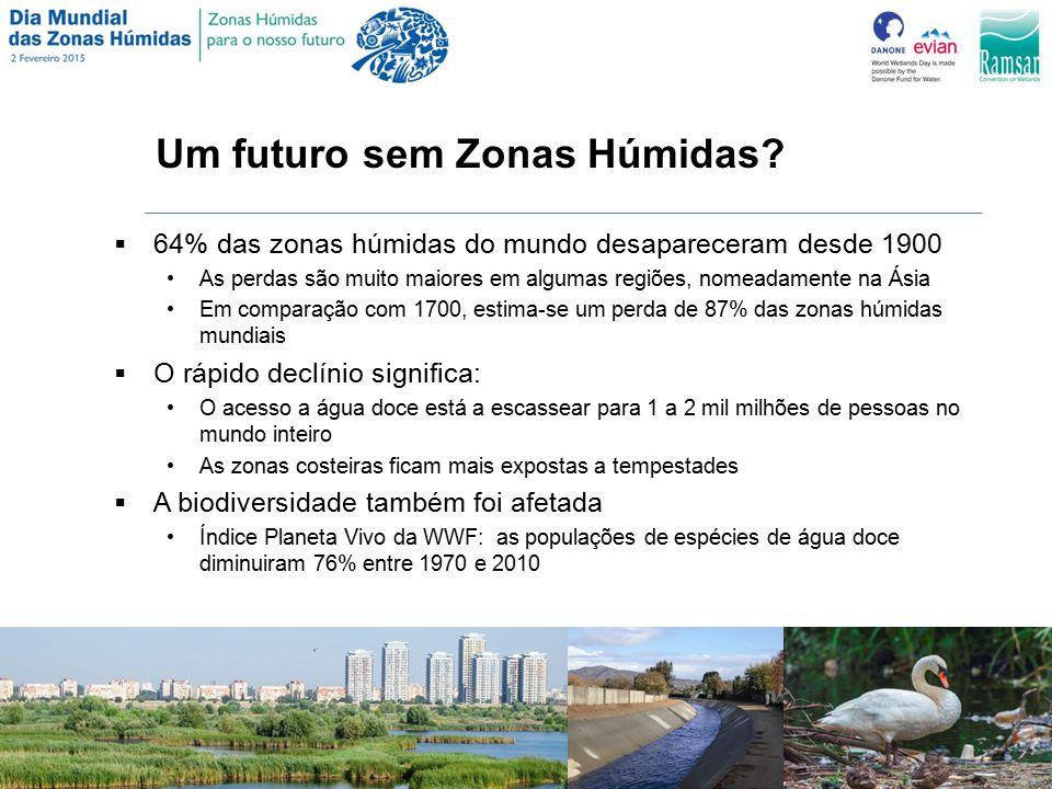 Um futuro sem Zonas Húmidas