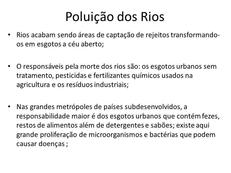 Poluição dos Rios Rios acabam sendo áreas de captação de rejeitos transformando-os em esgotos a céu aberto;