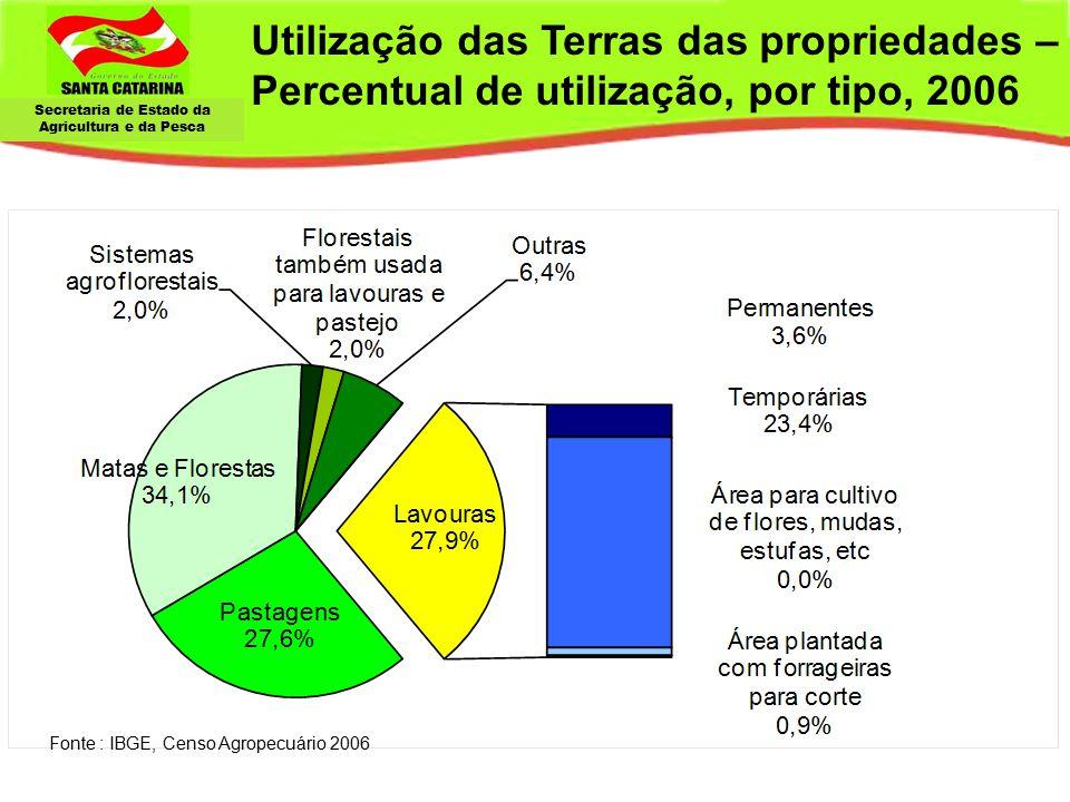 Utilização das Terras das propriedades – Percentual de utilização, por tipo, 2006