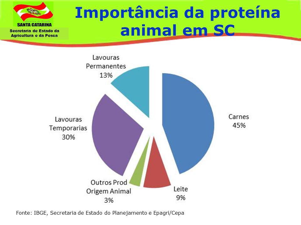 Importância da proteína animal em SC