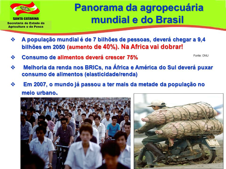 Panorama da agropecuária mundial e do Brasil