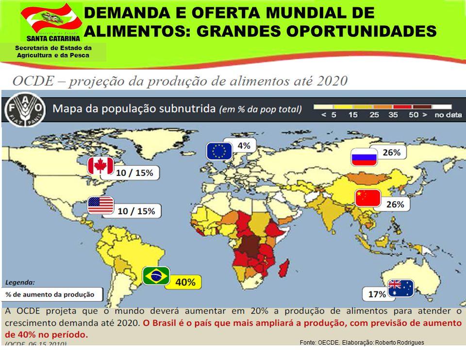 DEMANDA E OFERTA MUNDIAL DE ALIMENTOS: GRANDES OPORTUNIDADES