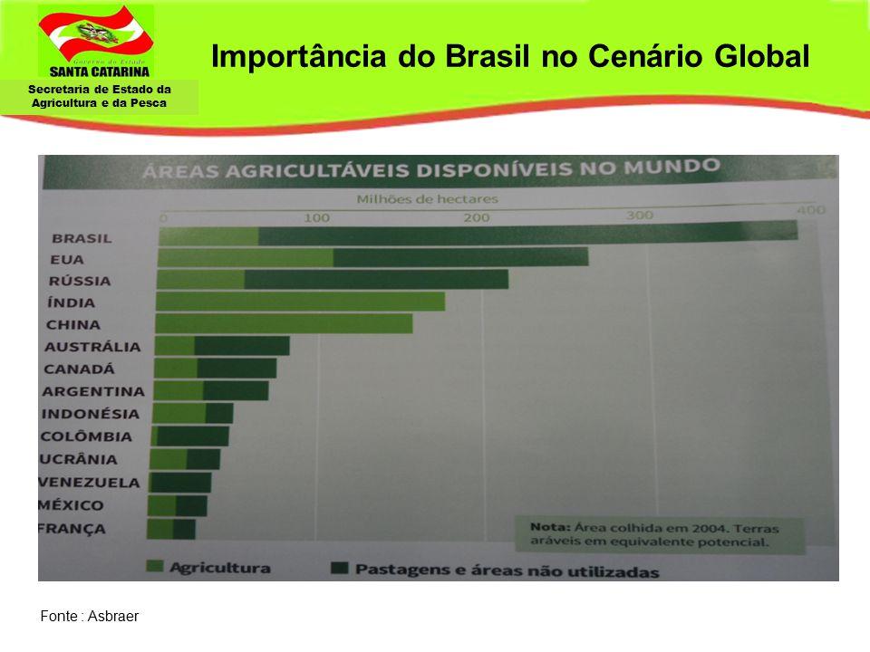 Importância do Brasil no Cenário Global