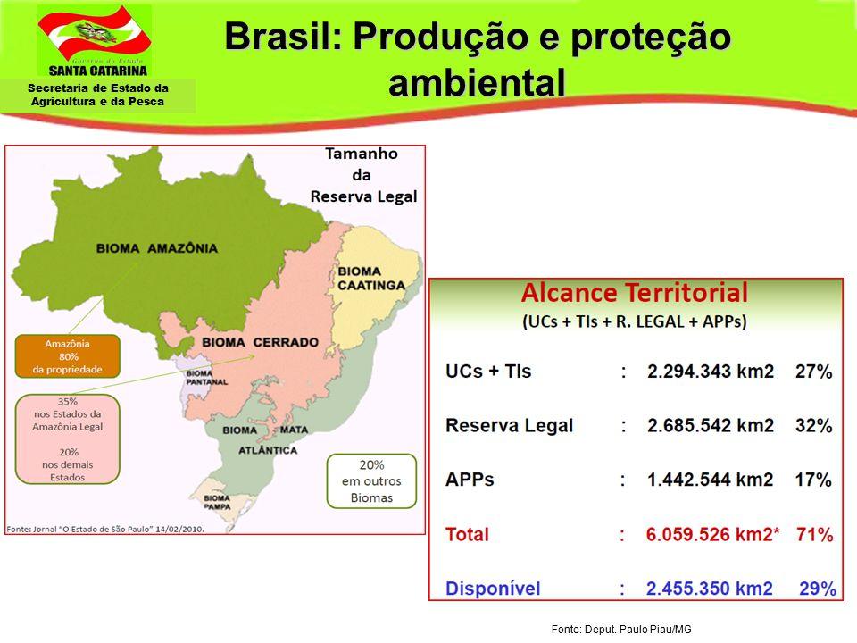 Brasil: Produção e proteção ambiental