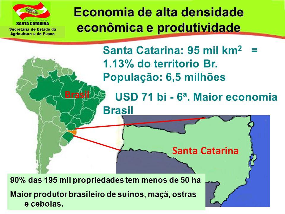 Economia de alta densidade econômica e produtividade