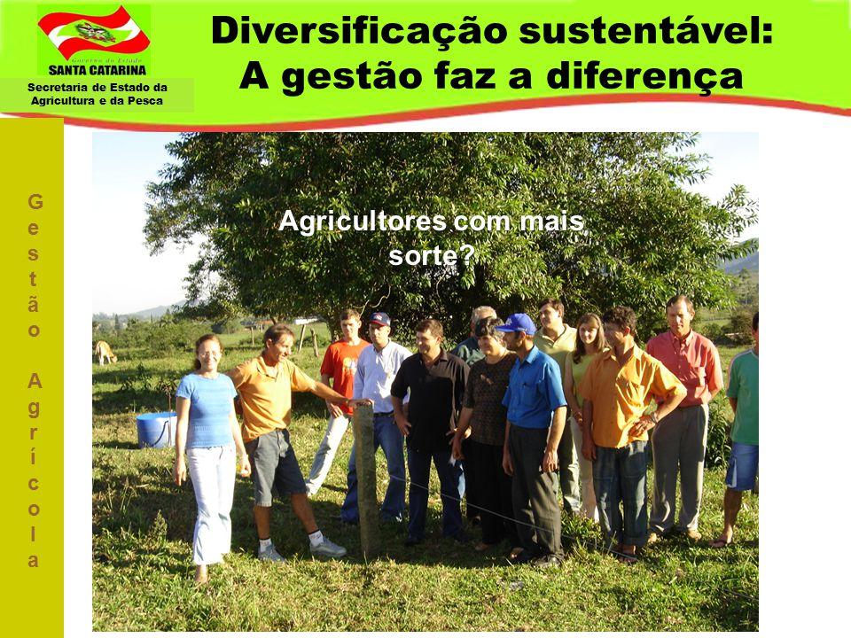 Diversificação sustentável: A gestão faz a diferença