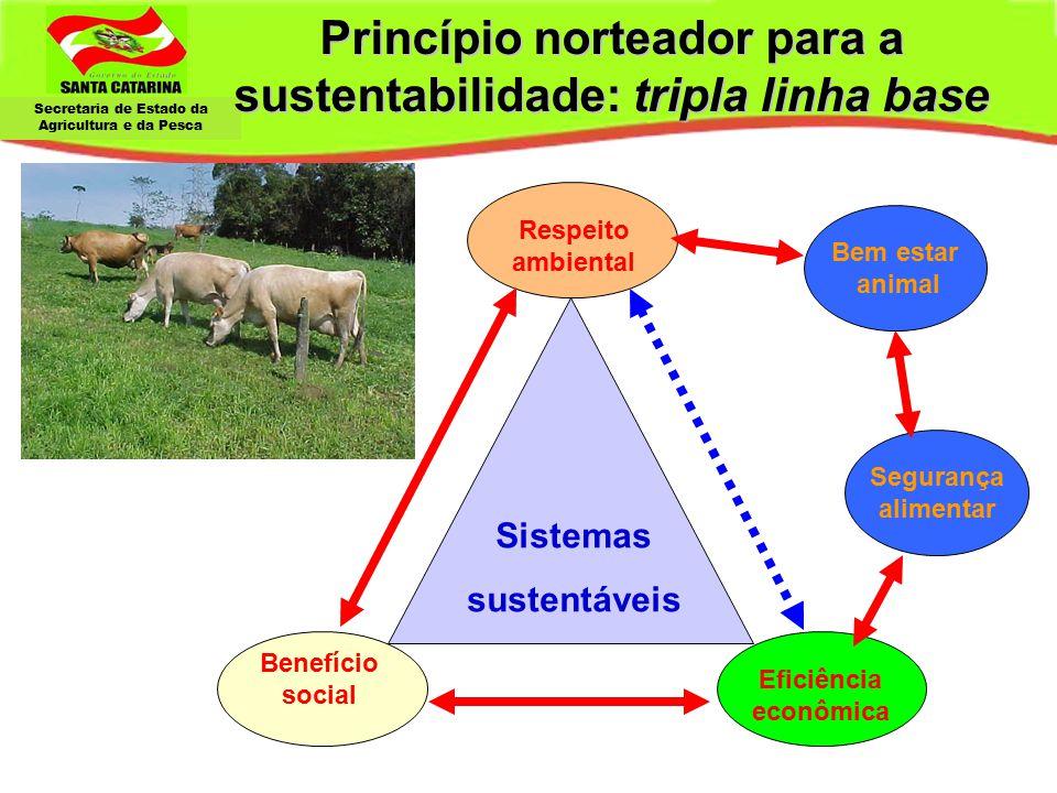 Princípio norteador para a sustentabilidade: tripla linha base