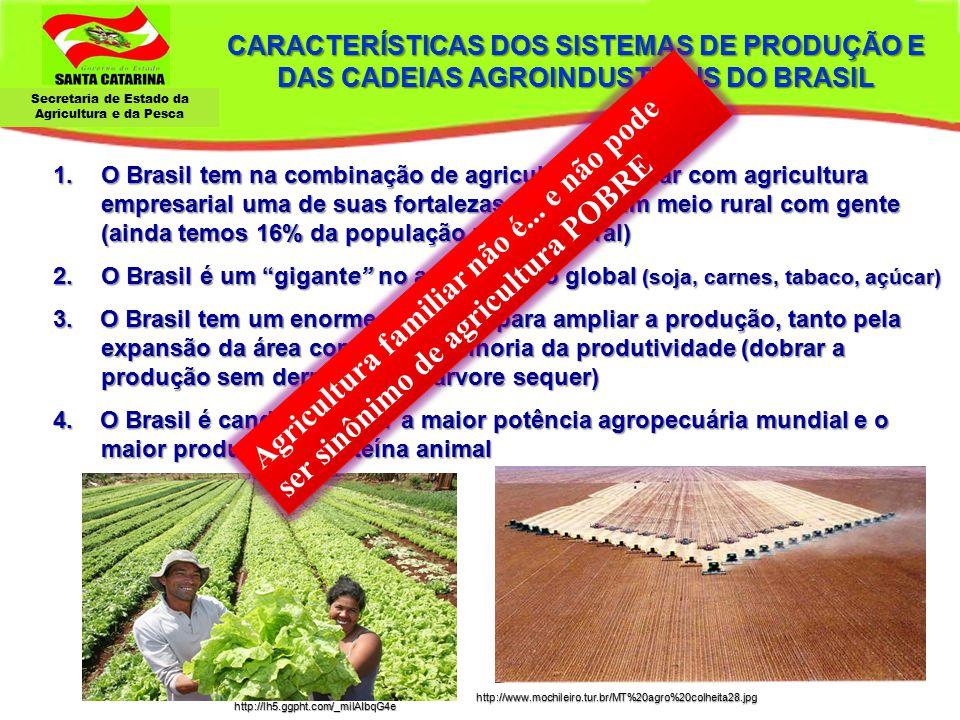CARACTERÍSTICAS DOS SISTEMAS DE PRODUÇÃO E DAS CADEIAS AGROINDUSTRIAIS DO BRASIL