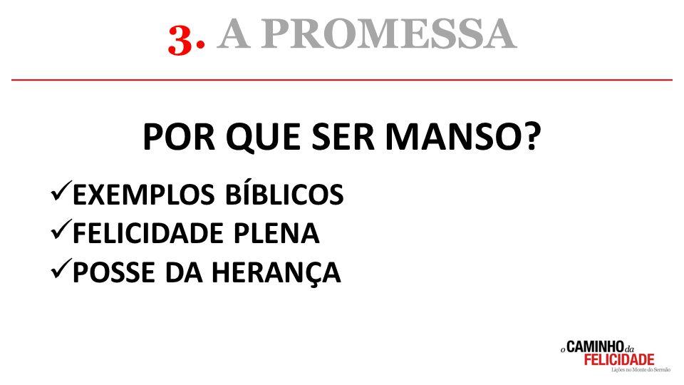3. A PROMESSA POR QUE SER MANSO EXEMPLOS BÍBLICOS FELICIDADE PLENA