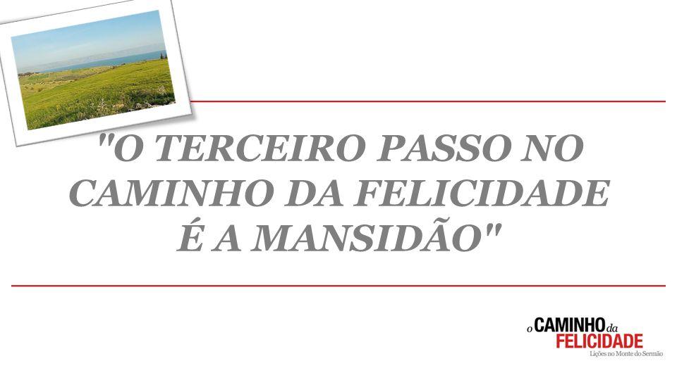O TERCEIRO PASSO NO CAMINHO DA FELICIDADE
