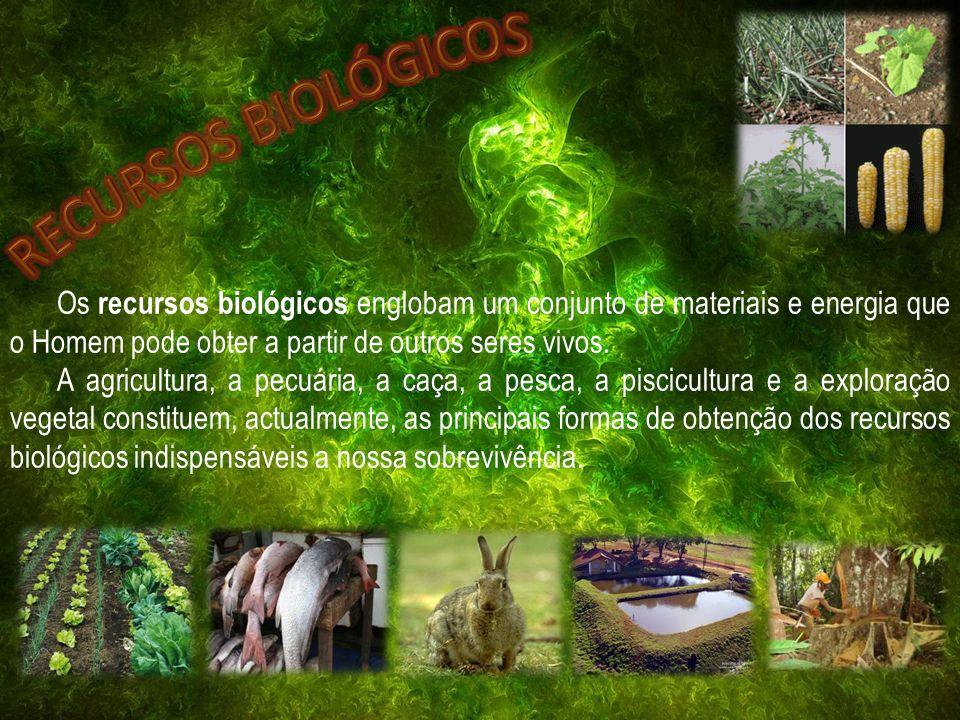 RECURSOS BIOLÓGICOS Os recursos biológicos englobam um conjunto de materiais e energia que o Homem pode obter a partir de outros seres vivos.